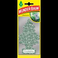 Wunder-Baum - Eucalyptus